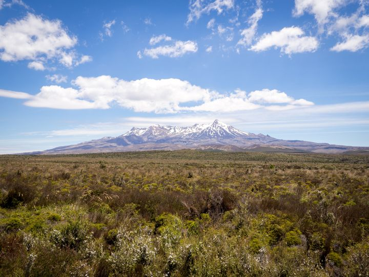 Government funding gives Mt Ruapehu gondola the green light