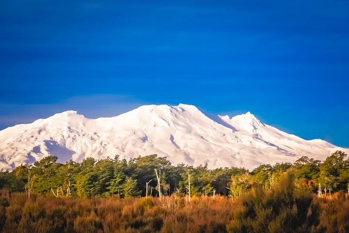 Mt Ruapehu 2020 ski season guide to what's on now