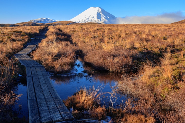 Walking tracks as an alternative activity if a mt ruapehu closure strikes