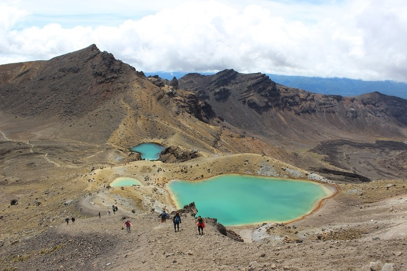 holiday in tongariro